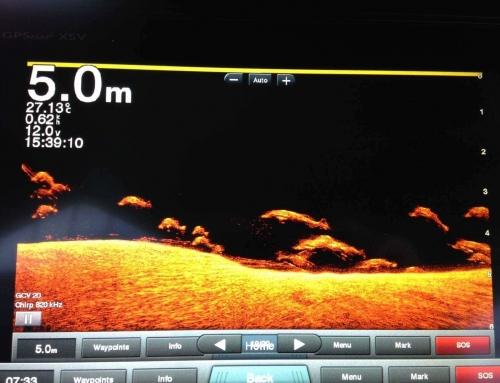 GARMIN 超高精細スキャンソナーシステム GCV20+GT34UHD-TM