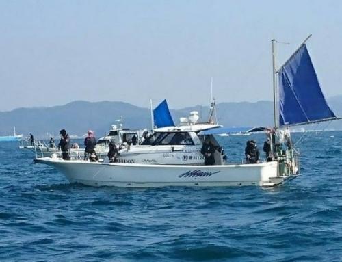 EVERGREEN社プロスタッフ様の魚探をプロデュースさせていただいてます